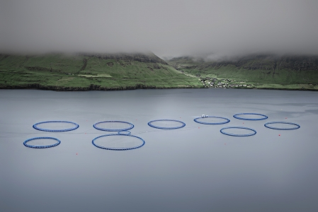 SALMON FISH FARM -FAROE ISLANDS