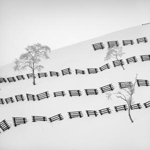 SNOW FENCE NO.2 -HOKKAIDO -2017