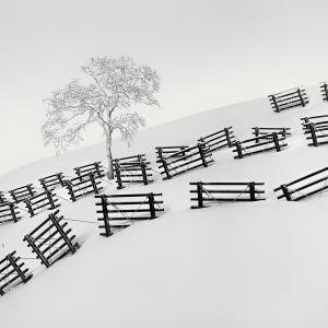 SNOW FENCE NO.5 -HOKKAIDO -2017